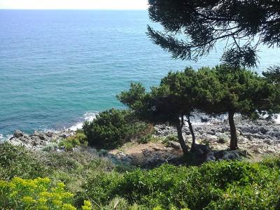 San Felice Circeo sea